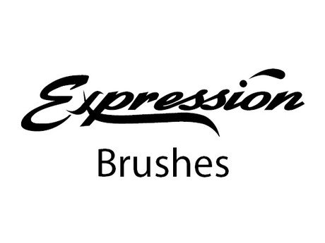 284.Rowney Expression Brushes